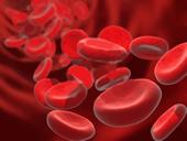 血液のイメージです